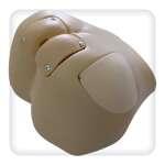 Манекен-тренажер постановки клизмы, внутримышечных инъекций, обработки стом